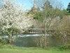 River Exe